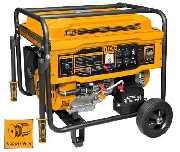 Generador A Gasolina 6.5kva 25l Ingco